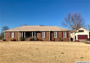 Photo of 105 INDIAN TRACE CIRCLE, MERIDIANVILLE, AL 35759 (MLS # 1083605)