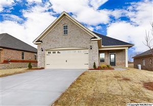 Photo of 29755 THUNDERPAW DRIVE, HARVEST, AL 35749 (MLS # 1071853)