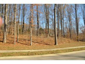 Photo of 4671 S Long Hill Drive, Bloomington, IN 47401 (MLS # 201746479)