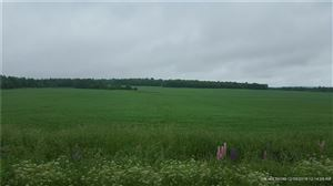 Photo of 124 Tangle Ridge RD, Perham, ME 04766 (MLS # 1314043)
