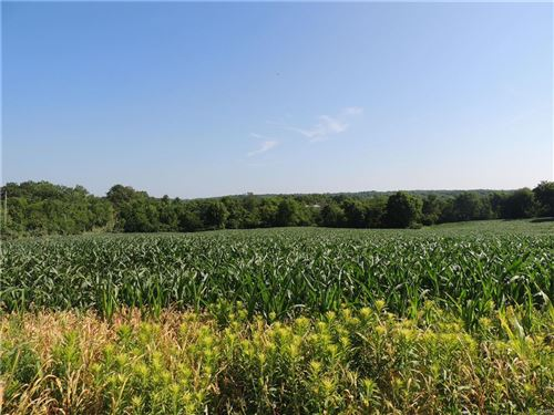 Photo of 0 Kitson, Winfield, MO 63389 (MLS # 17047868)