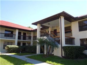 Photo of 313 HAMMOCK PINE BLVD #313, CLEARWATER, FL 33761 (MLS # U7839323)