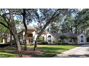 Featured picture for the property O5548456