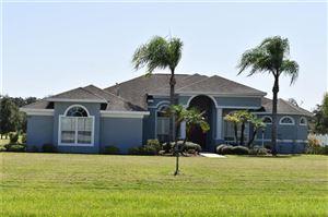 Photo of 9417 SWIFT CREEK CIR, DOVER, FL 33527 (MLS # T2870510)