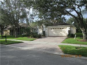 Photo of 5128 MAYFAIR PARK CT, TAMPA, FL 33647 (MLS # U7835716)