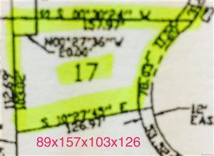 Photo of 3133 SPRUCE DR, Port Huron, MI 48060-1637 (MLS # 21375947)