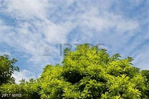 Featured picture for the property BA10098009