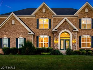 Photo of 22406 DOLOMITE HILLS DR, ASHBURN, VA 20148 (MLS # LO10087089)