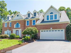 Photo of 20990 SCARLET RUSH CT, ASHBURN, VA 20147 (MLS # LO10010106)