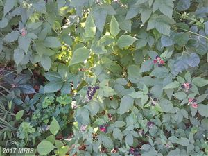 Tiny photo for 406 LONGDRAFT RD, GAITHERSBURG, MD 20878 (MLS # MC9980111)