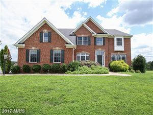 Photo of 14113 SPRINGVIEW CT, LEESBURG, VA 20176 (MLS # LO10012129)