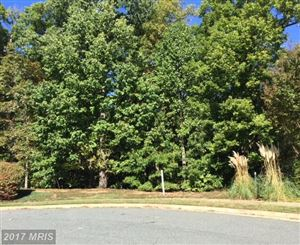 Photo of 1013 FEATHERSTON CT, FREDERICKSBURG, VA 22401 (MLS # FB10084135)