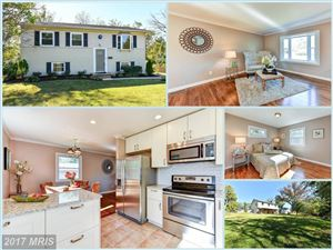 Photo of 723 HOLLY AVE W, STERLING, VA 20164 (MLS # LO10091139)