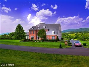 Photo of 4202 MARYLAND CT, MIDDLETOWN, MD 21769 (MLS # FR9979164)