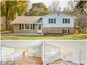 Photo of 4985 LINGANORE VIEW DR, MONROVIA, MD 21770 (MLS # FR10101224)