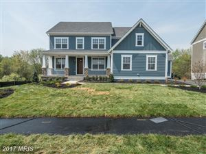 Photo of 40781 FOXTAIL FIELDS DR, ALDIE, VA 20105 (MLS # LO10064236)