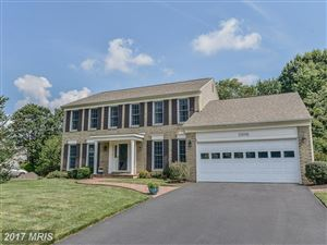 Photo of 12606 HAY MEADOW PL, HERNDON, VA 20171 (MLS # FX10011251)
