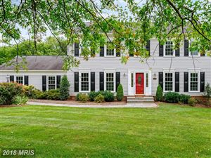Photo of 13609 COPPER RIDGE DR, HERNDON, VA 20171 (MLS # FX10070352)