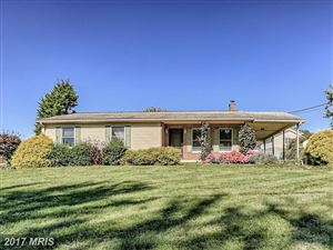 Featured picture for the property FL10085415