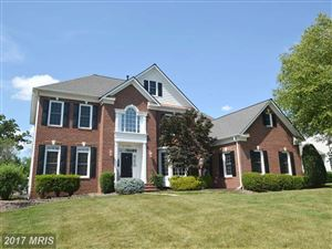 Photo of 43486 SAVOY WOODS CT, CHANTILLY, VA 20152 (MLS # LO10052536)