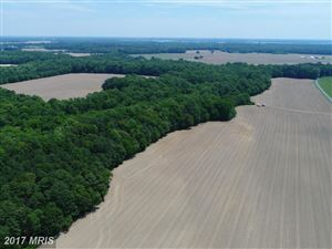 Photo of BEAVER DAM RD, TRAPPE, MD 21673 (MLS # TA9883554)