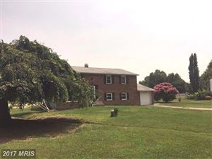 Photo of 127 N LAKE DR N, STEVENSVILLE, MD 21666 (MLS # QA10102564)