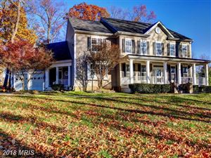 Photo of 18258 CHESTNUT GROVE CT, PURCELLVILLE, VA 20132 (MLS # LO10106624)