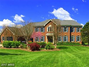 Photo of 17821 TOBERMORY PL, LEESBURG, VA 20175 (MLS # LO10044670)