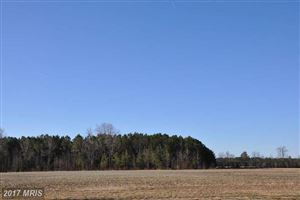 Photo of BARBARO DR, HEBRON, MD 21830 (MLS # WC10011683)