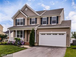 Photo of 168 MEADOW BROOK WAY, CENTREVILLE, MD 21617 (MLS # QA9986696)