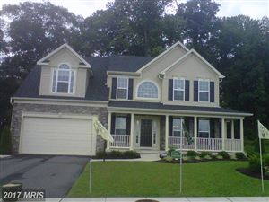 Photo of 143 EAST BROOK DR, CENTREVILLE, MD 21617 (MLS # QA9953783)