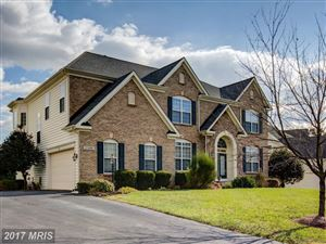 Photo of 22406 DOLOMITE HILLS DR, ASHBURN, VA 20148 (MLS # LO10106850)