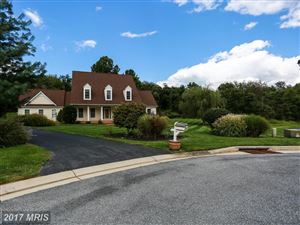 Photo of 6 LOCKSLEY CT, PHOENIX, MD 21131 (MLS # BC10047949)