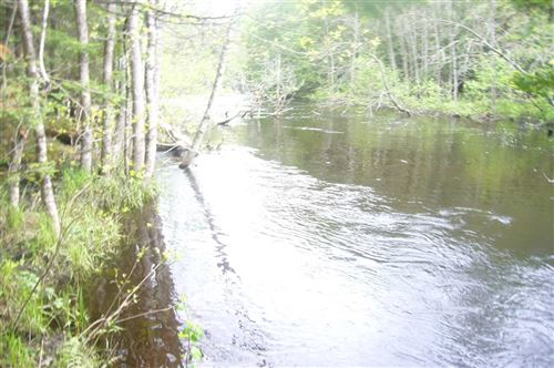 Photo of LOON RAPIDS Road, MOUNTAIN, WI 54149 (MLS # 50164563)
