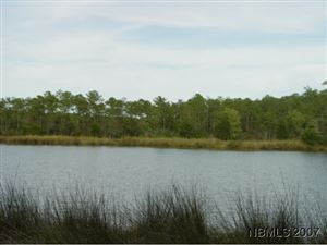 Photo of 0 Tar Creek Road, Oriental, NC 28571 (MLS # 90064207)