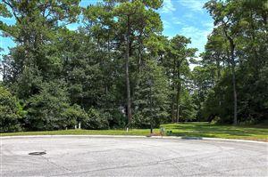 Photo of 107 Capn Pat Lane, Morehead City, NC 28557 (MLS # 100068589)