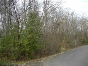 Photo of N-3 Lemley Street, Morgantown, WV 26508 (MLS # 10117964)