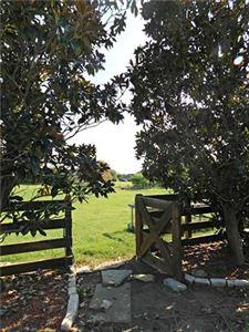 Tiny photo for 909 E Ownsby Parkway, Celina, TX 75009 (MLS # 13691015)