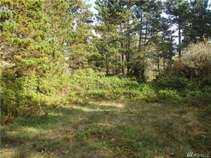 Photo of 2100 304th Place Lot: 1, Ocean Park, WA 98640 (MLS # 1208020)