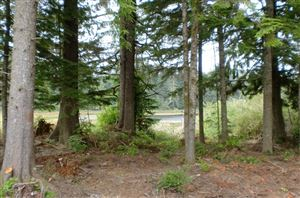 Photo of 1 155th #1, Long Beach, WA 98631 (MLS # 78050)