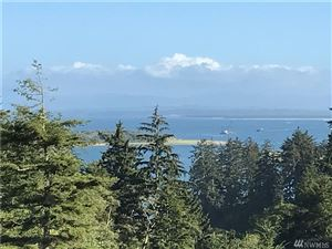 Photo of 35 Discovery View Court Lot: 35, Ilwaco, WA 98624 (MLS # 1184970)