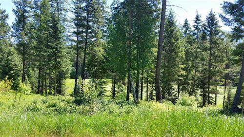 Photo of 327 Gleneagles Trail, Columbia Falls, MT 59912 (MLS # 21708400)