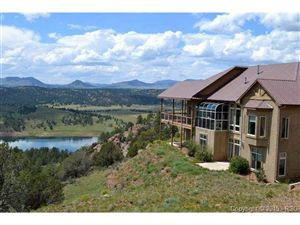 Photo of 317 S Lakeview Heights, Florissant, CO 80816 (MLS # 743469)