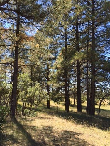 Photo of 100 Columbine, Chama, NM 87520 (MLS # 201704130)