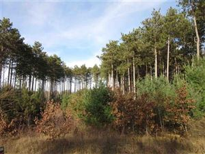 Photo of Lot 1 Gulch Ave, Dell Prairie, WI 53965 (MLS # 1818509)