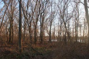 Photo of L9 County Road C, Packwaukee, WI 53949 (MLS # 1818543)