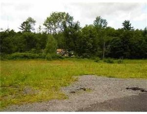 Photo of 76.3 State Route 17B, White Lake, NY 12786 (MLS # 47163)