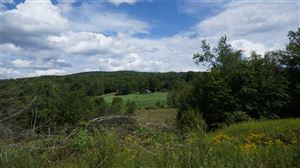 Photo of (*34) State Route 42, Neversink, NY 12765 (MLS # 47199)