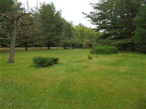 Photo of 1461 State Route 42, Forestburgh, NY 12777 (MLS # 46468)