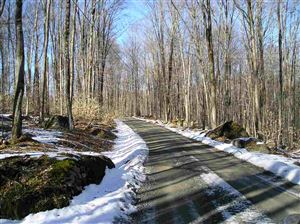 Photo of Starlight Dr, Monticello, NY 12701 (MLS # 47500)